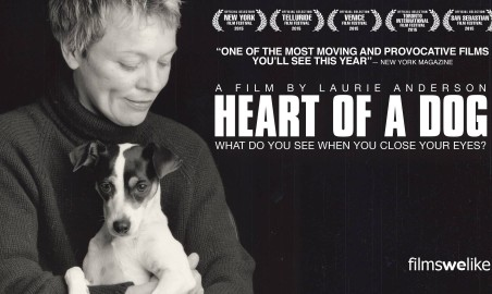 heart of dog